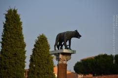 Roma_farkasa_Pisa_2012_02_resize