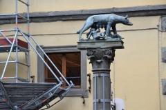 Roma_farkasa_Siena_2012_03_resize