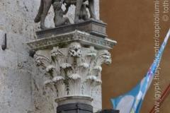 Roma_farkasa_Siena_2012_06_resize