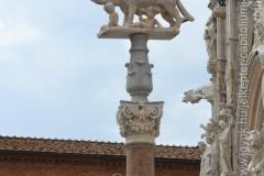 Roma_farkasa_Siena_2012_08_resize