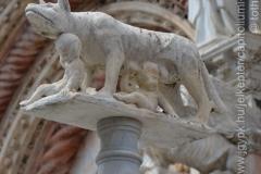 Roma_farkasa_Siena_2012_09_resize