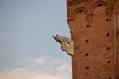 Roma_farkasa_Siena_2012_12_resize