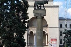 Roma_farkasa_Temesvar_2012_03_resize