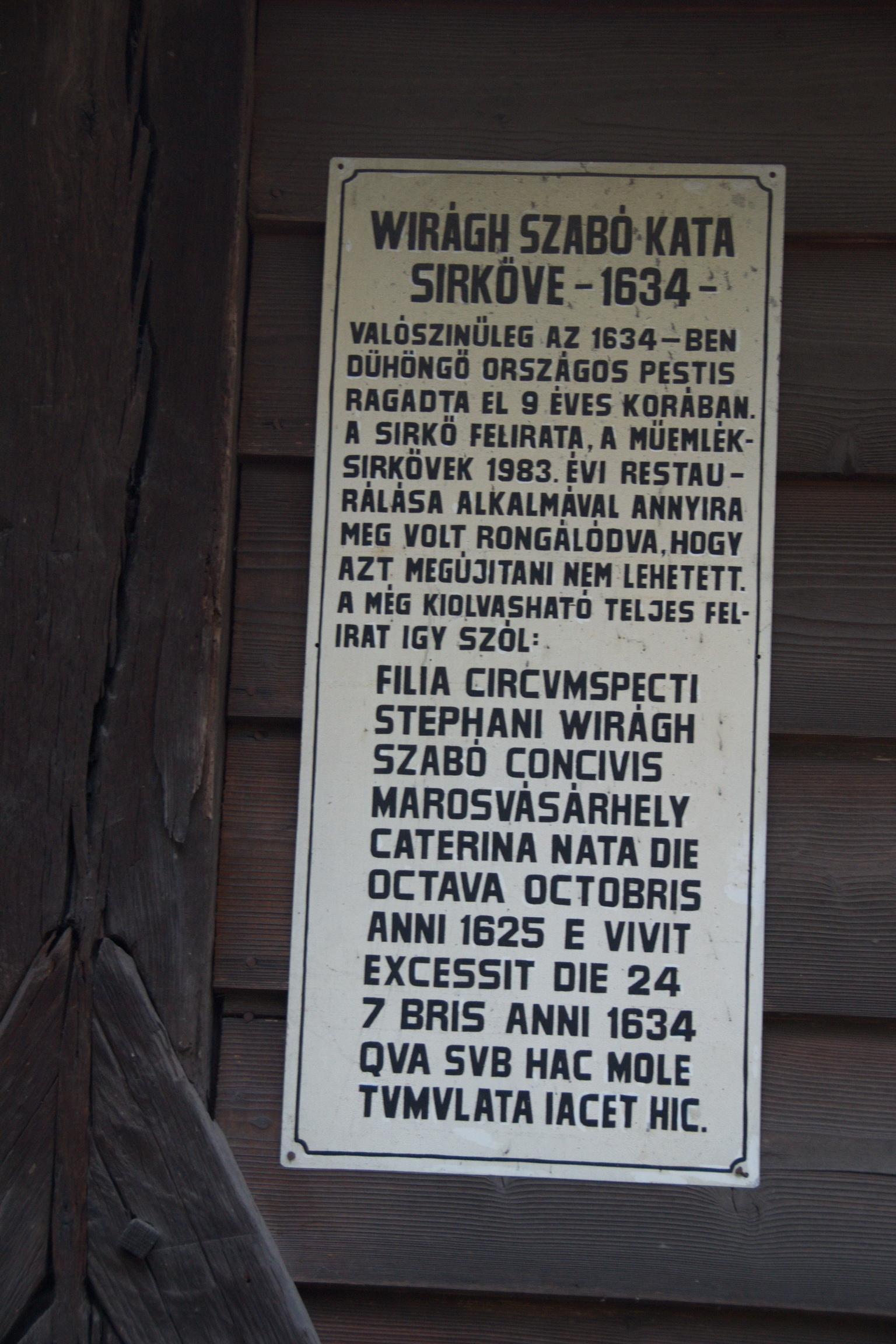 Temeto_Marosvasarhely_2011_07_resize