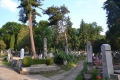 Temeto_Marosvasarhely_2011_03_resize