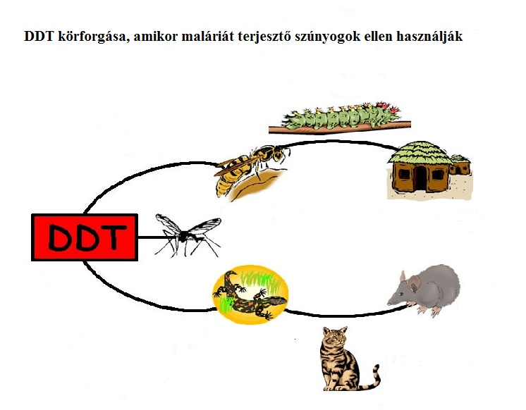 Malaria and DDT