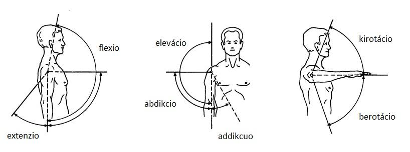 folyadékhiány a vállízület kezelésében aszkorutin ízületi fájdalmak esetén